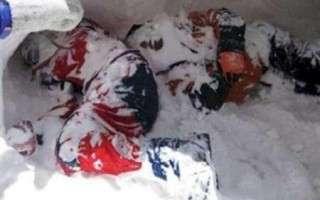 3 چالوسی دیگر جان خود را در کوهستان برفی از دست دادند