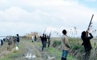 سلاخی پرندگان مهاجر در بابلسر و فریدونکنار/ بهجای حمایت از شکارچیان غیرمجاز، به فکر کشاورزان منطقه باشید