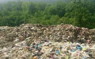 از جدال زبالهای تا تجلیل سفارشی!/ گزارشهای گل و بلبلی برای میراث 40 ساله مدیریت پسماند
