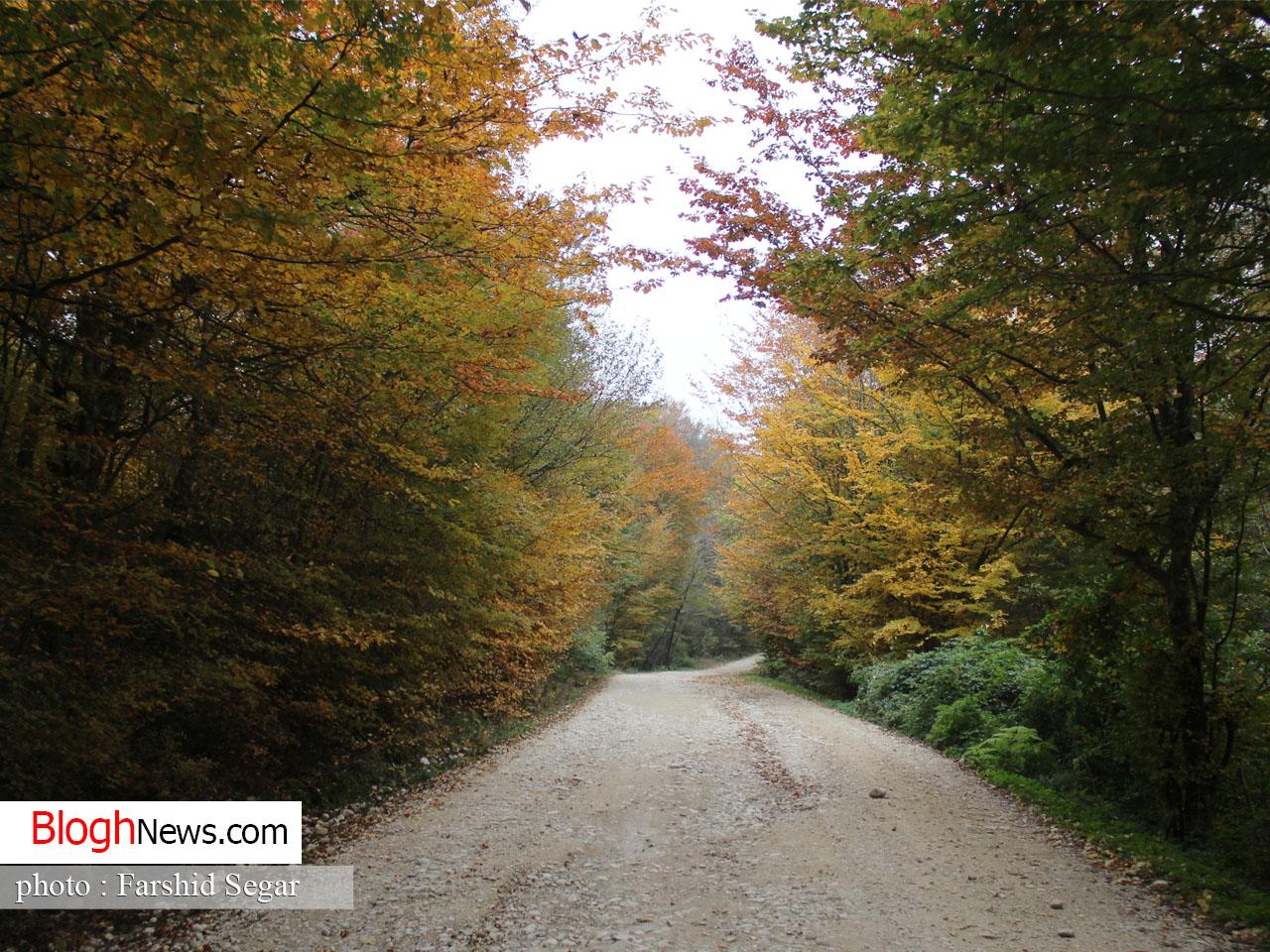 طبیعت پاییزی شرق مازندران