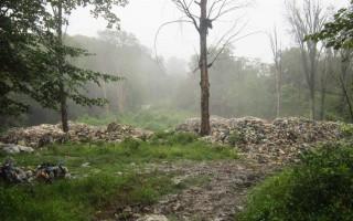 جنگلهای مازندران؛ مامن زبالههای رنگارنگ/ورود نگرانکننده پساب به رودخانه و دریا