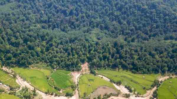 ابلاغ حکم قطعی بازگشت جنگلهای هیرکانی آقمشهد ساری به بیتالمال