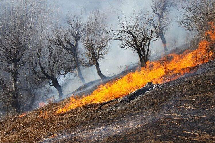 مسافران از روشن کردن آتش در حاشیه جنگلها و مراتع خودداری کنند