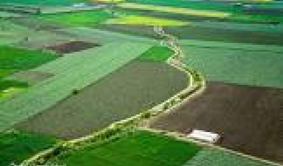 تمام اراضی کشاورزی تا ۴سال آینده سنددار میشود