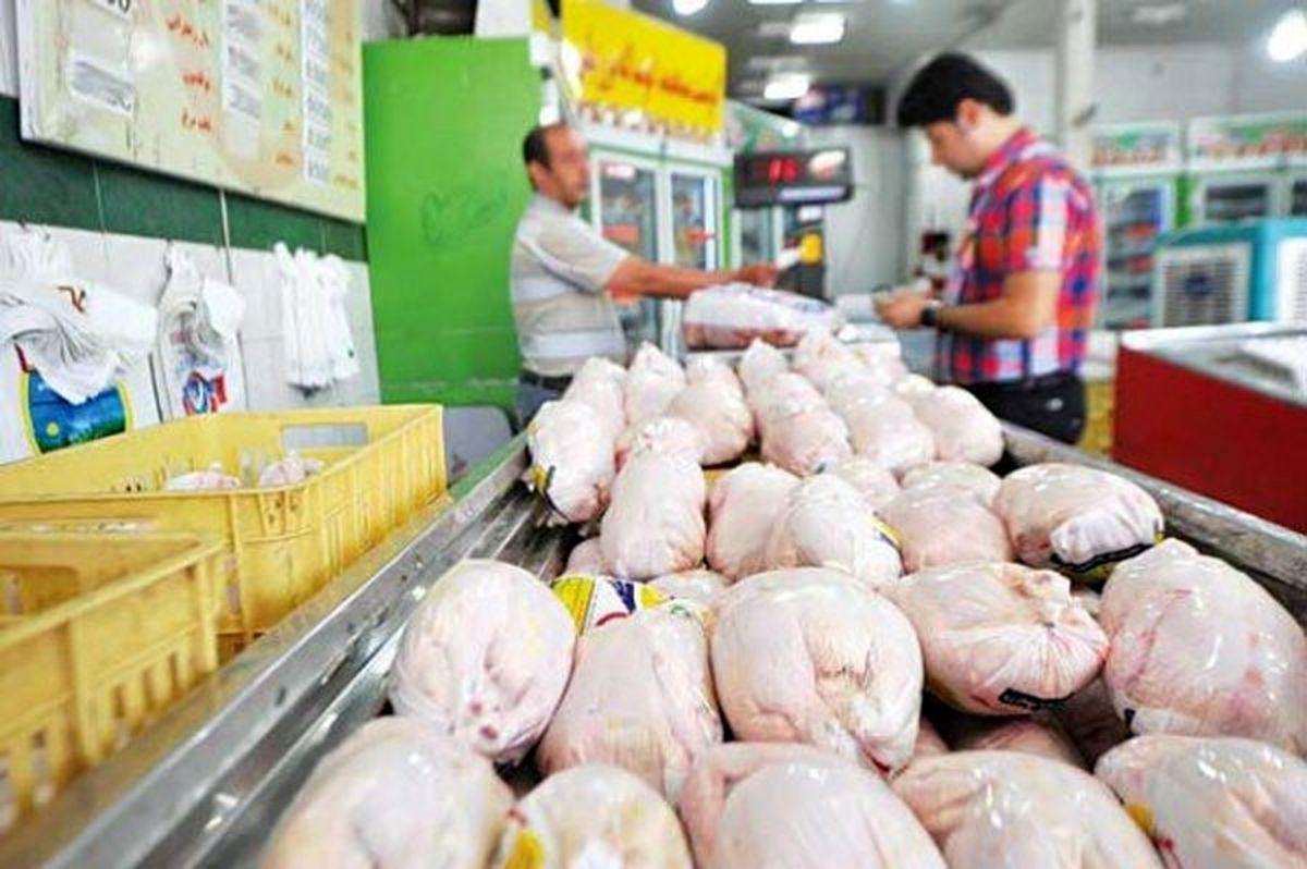مرغ مهرماه ارزان میشود