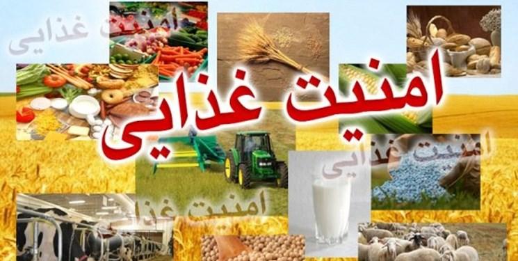 طرح تقویت امنیت غذایی کشور در انتظار ابلاغ شورای نگهبان