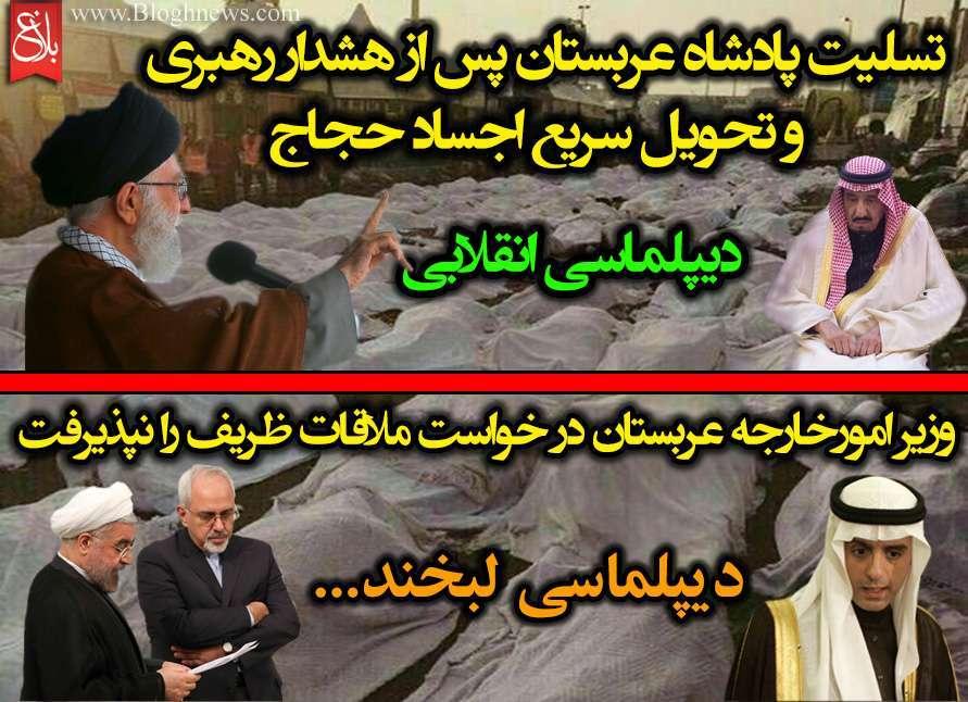 Image result for منا قرباني ديپلماسي